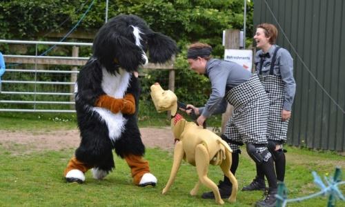 Gallery Oak Tree Animals Charity Cumbria S